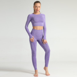 Seamless Jacquard Knitted Hip-lifting Elastic Fitness Suit  NSNS10718