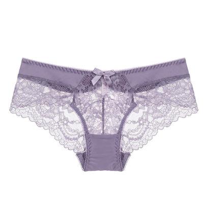 Sexy Lace Transparent Temptation Mesh Panties  NSSM21527