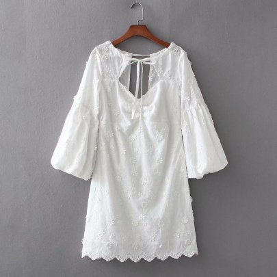 Wholesale New Comfortable Spring Lantern Sleeve Lace Dress  NSAM56016