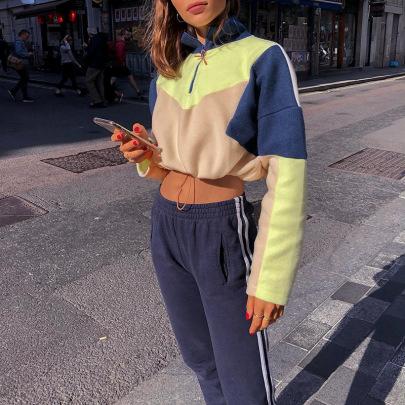 Velvet High-neck Color-blocking Drawstring Cropped Hooded Sweatshirt NSMEI54858