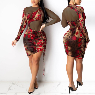 Fashion See-through Snakeskin Print Pleated Long-sleeved Sexy Dress NSYMA55310